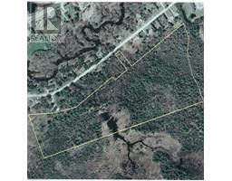 000 MCFADDEN Road, north kawartha twp, Ontario