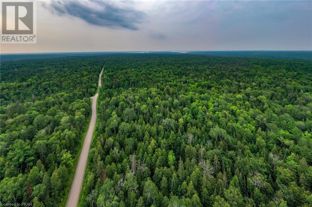 00 Ledge Road, Trent Lakes, Ontario  K0M 1A0 - Photo 10 - 40152664