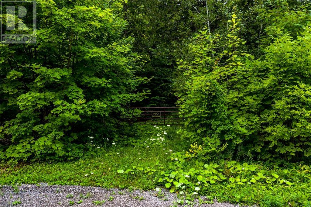 00 Ledge Road, Trent Lakes, Ontario  K0M 1A0 - Photo 19 - 40152664