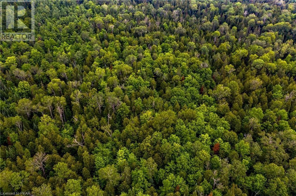 00 Ledge Road, Trent Lakes, Ontario  K0M 1A0 - Photo 2 - 40152664