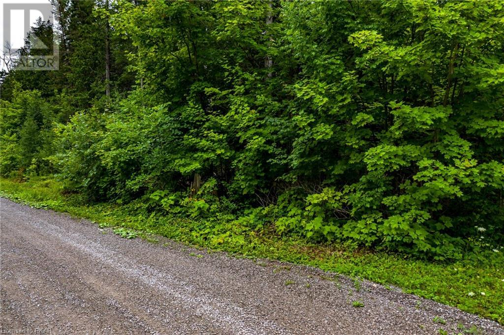 00 Ledge Road, Trent Lakes, Ontario  K0M 1A0 - Photo 20 - 40152664
