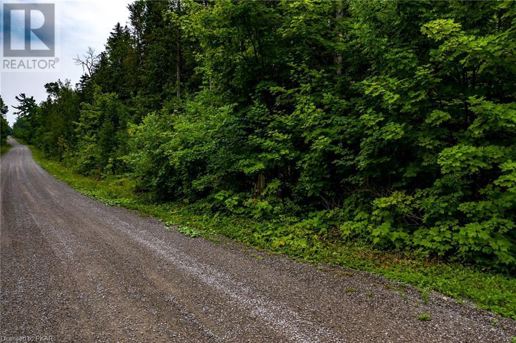 00 Ledge Road, Trent Lakes, Ontario  K0M 1A0 - Photo 21 - 40152664