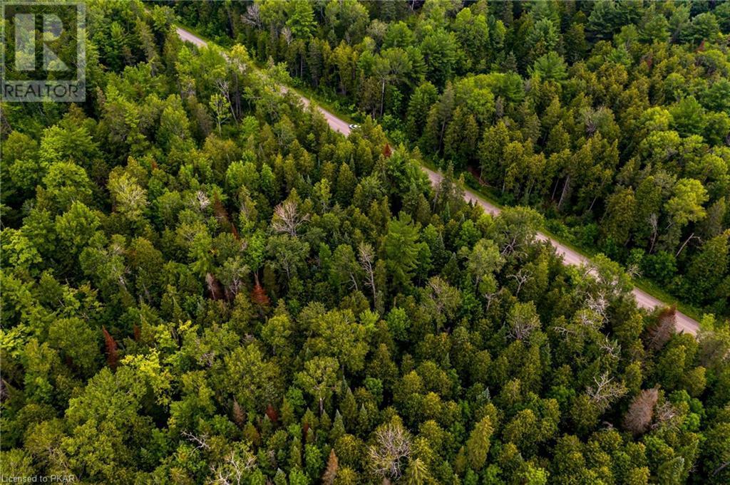 00 Ledge Road, Trent Lakes, Ontario  K0M 1A0 - Photo 3 - 40152664