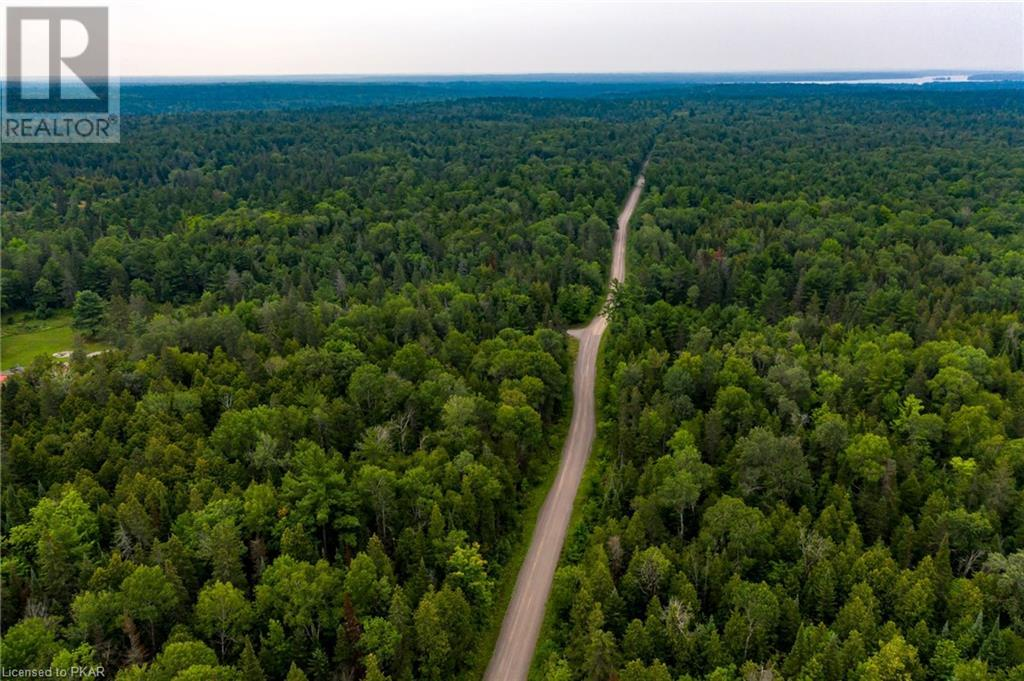 00 Ledge Road, Trent Lakes, Ontario  K0M 1A0 - Photo 9 - 40152664