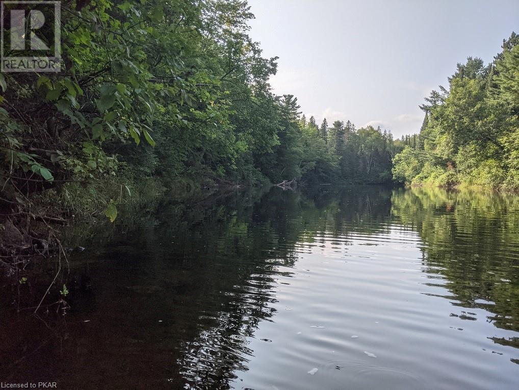 0 Pinery Road, Burnt River, Ontario  K0M 1C0 - Photo 1 - 40153599