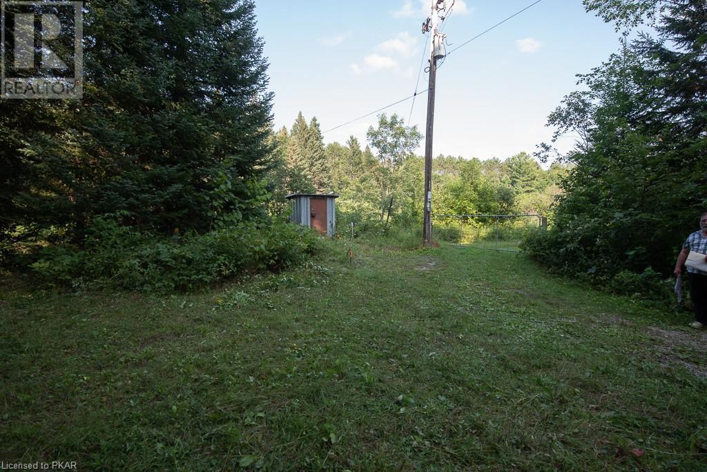 0 Pinery Road, Burnt River, Ontario  K0M 1C0 - Photo 10 - 40153599