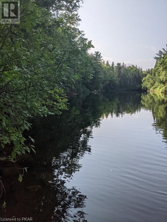 0 Pinery Road, Burnt River, Ontario  K0M 1C0 - Photo 2 - 40153599