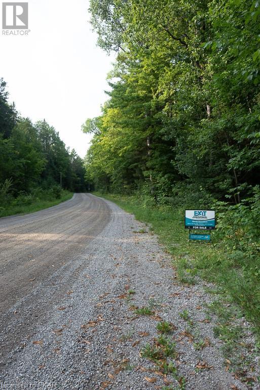 0 Pinery Road, Burnt River, Ontario  K0M 1C0 - Photo 3 - 40153599