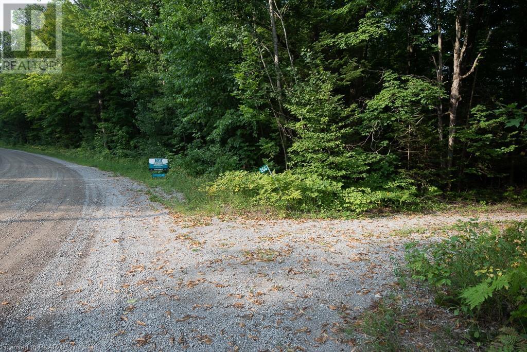 0 Pinery Road, Burnt River, Ontario  K0M 1C0 - Photo 5 - 40153599