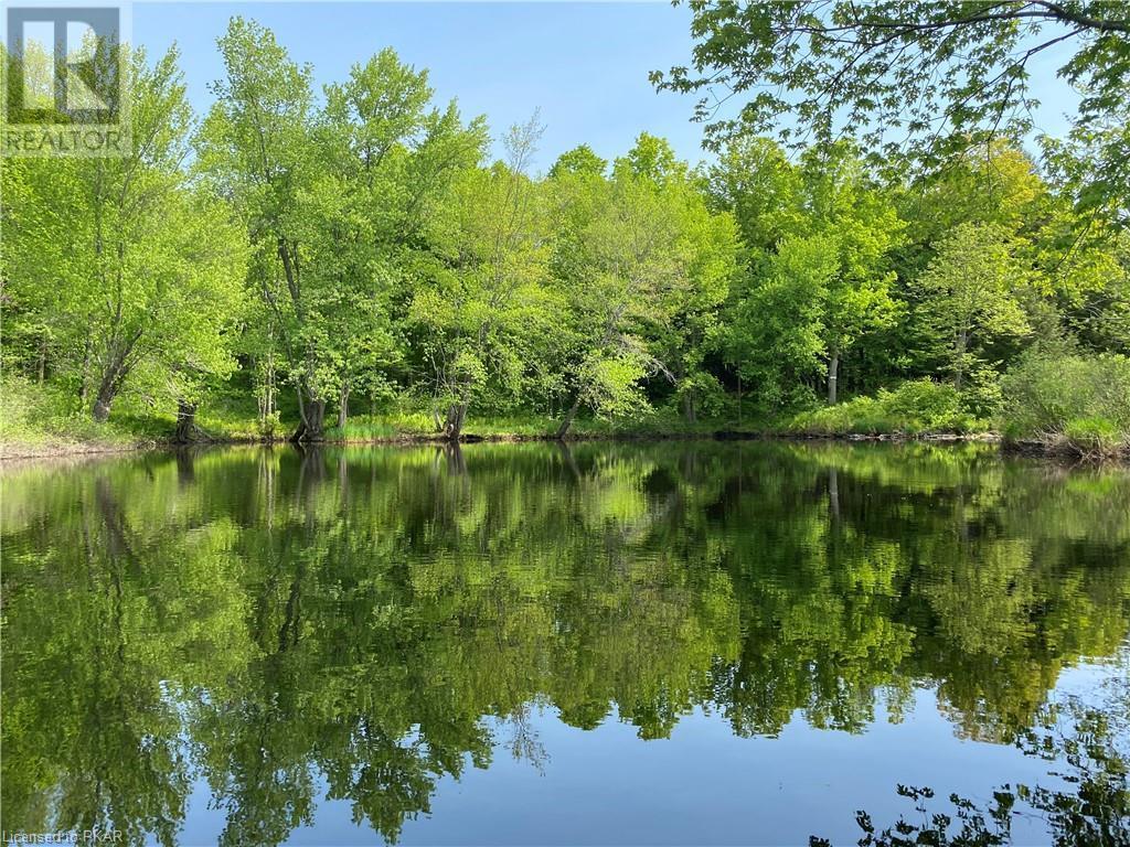 N/a Black River Road, Tweed, Ontario  K0K 1J0 - Photo 1 - 40160080