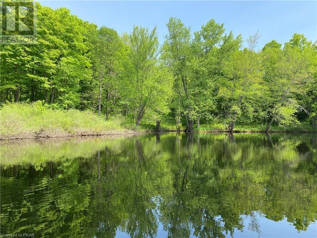 N/a Black River Road, Tweed, Ontario  K0K 1J0 - Photo 12 - 40160080