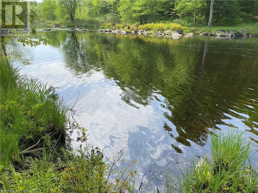 N/a Black River Road, Tweed, Ontario  K0K 1J0 - Photo 13 - 40160080