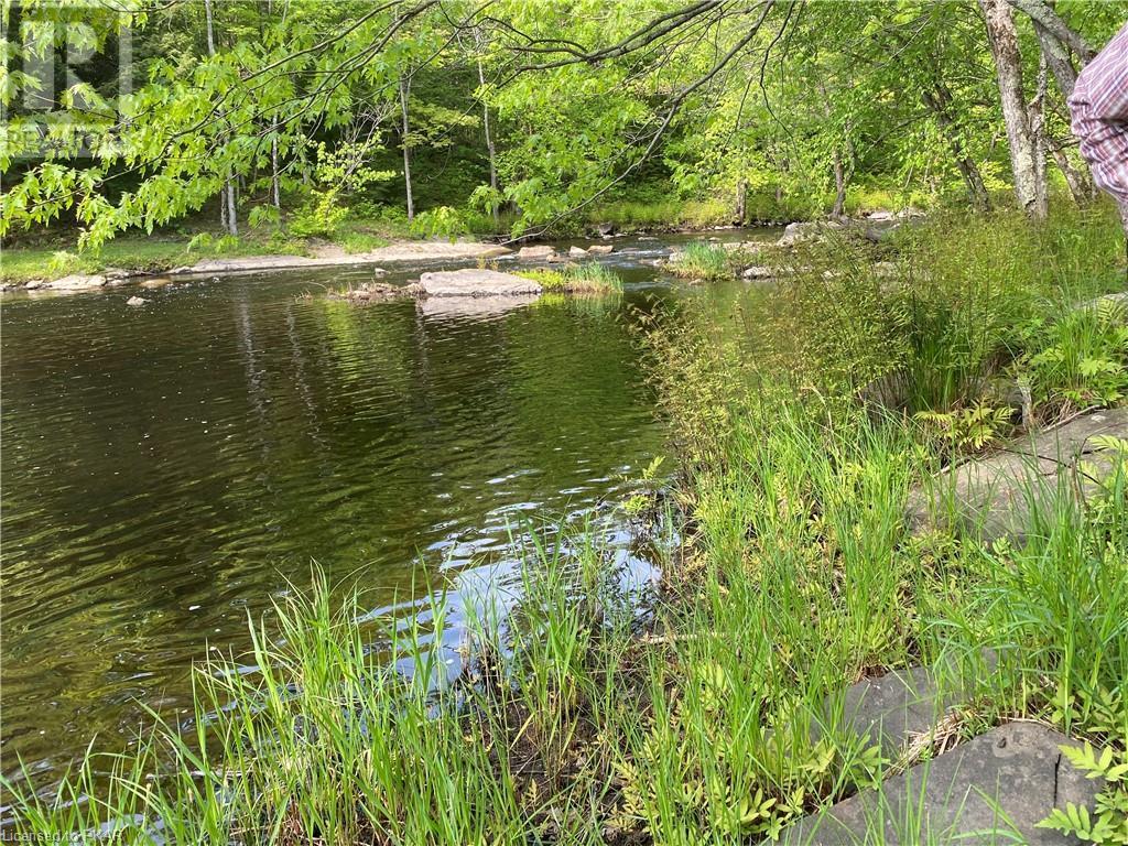 N/a Black River Road, Tweed, Ontario  K0K 1J0 - Photo 15 - 40160080