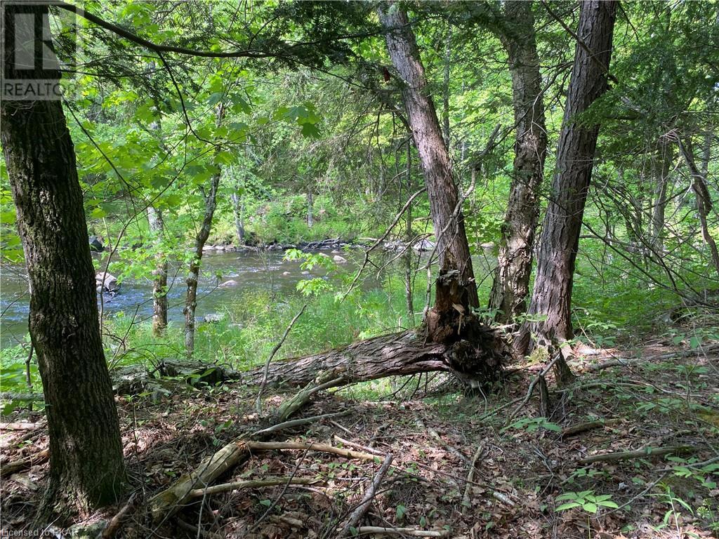 N/a Black River Road, Tweed, Ontario  K0K 1J0 - Photo 17 - 40160080