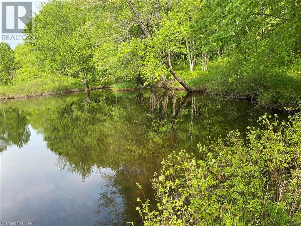 N/a Black River Road, Tweed, Ontario  K0K 1J0 - Photo 20 - 40160080