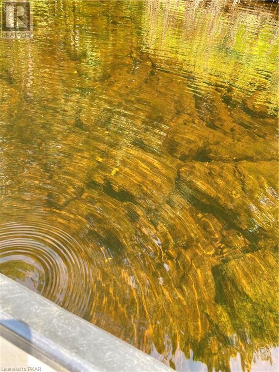 N/a Black River Road, Tweed, Ontario  K0K 1J0 - Photo 4 - 40160080