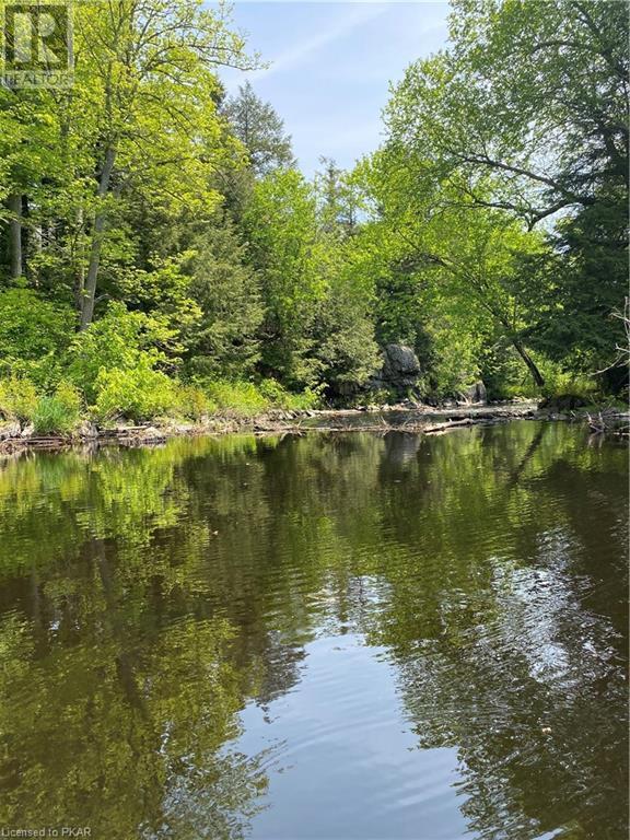 N/a Black River Road, Tweed, Ontario  K0K 1J0 - Photo 5 - 40160080
