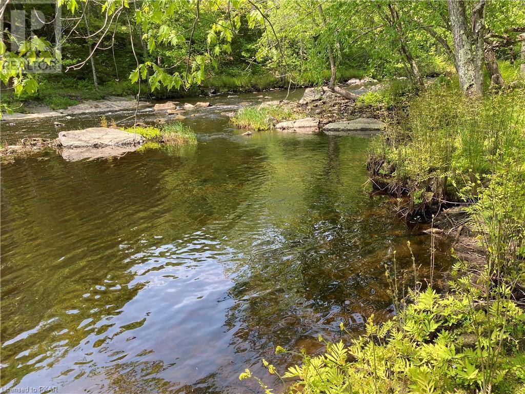 N/a Black River Road, Tweed, Ontario  K0K 1J0 - Photo 7 - 40160080